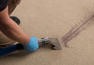 About Peaches N Clean Carpet Cleaning Services