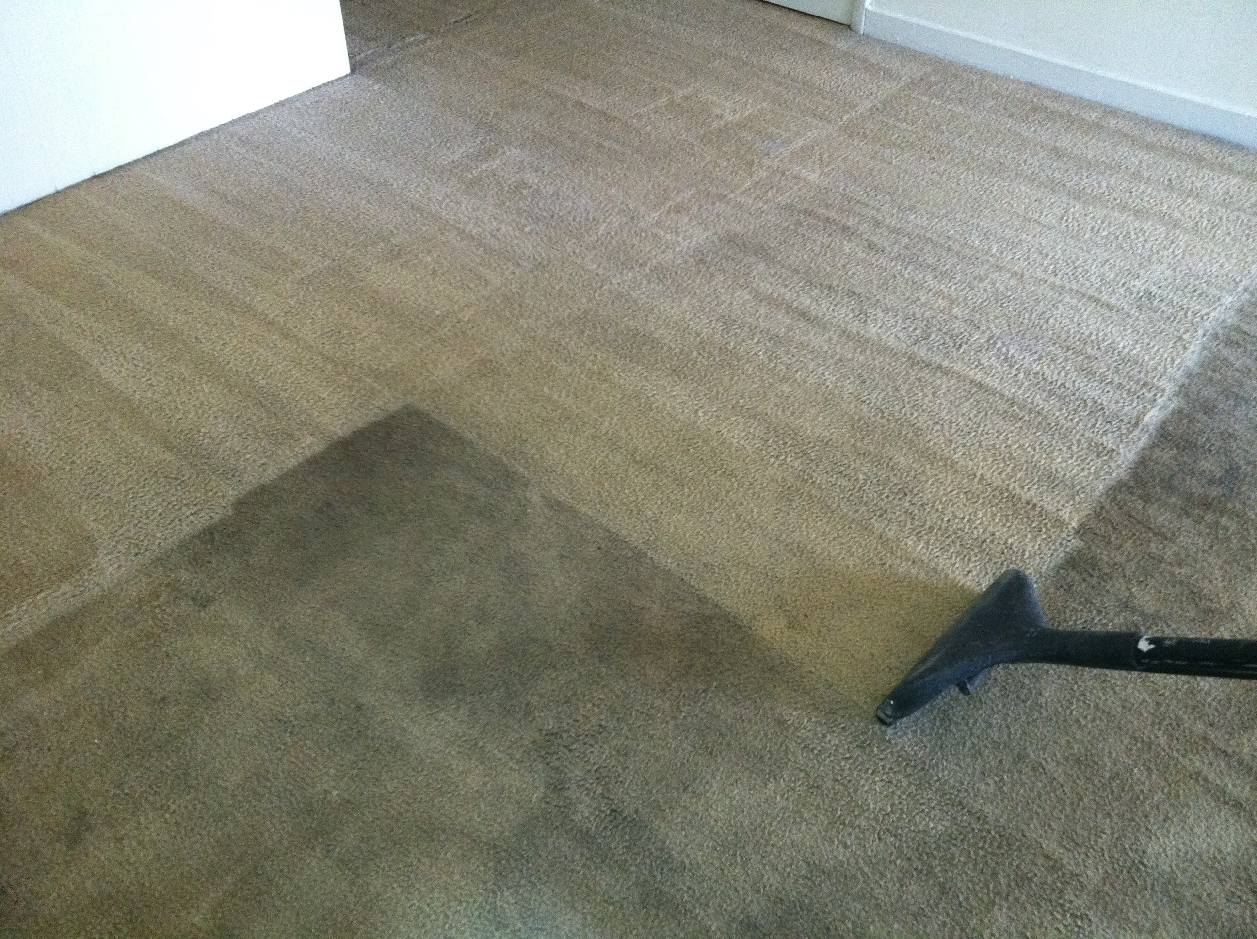 Professional Carpet Cleaning Peaches N Clean
