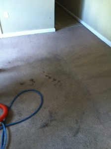 auburn al carpet cleaning pnc