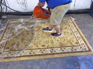 alabama georgia rug cleaning