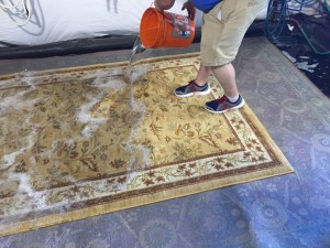 columbus rug cleaning3