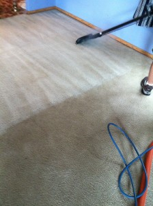 Peaches'n Clean Carpet Cleaning Montgomery
