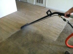 Peaches N Clean Carpet Cleaning Before Amp After Peaches